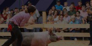 WKLM - Holmes County Fair